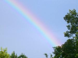 rainbow and deer 005